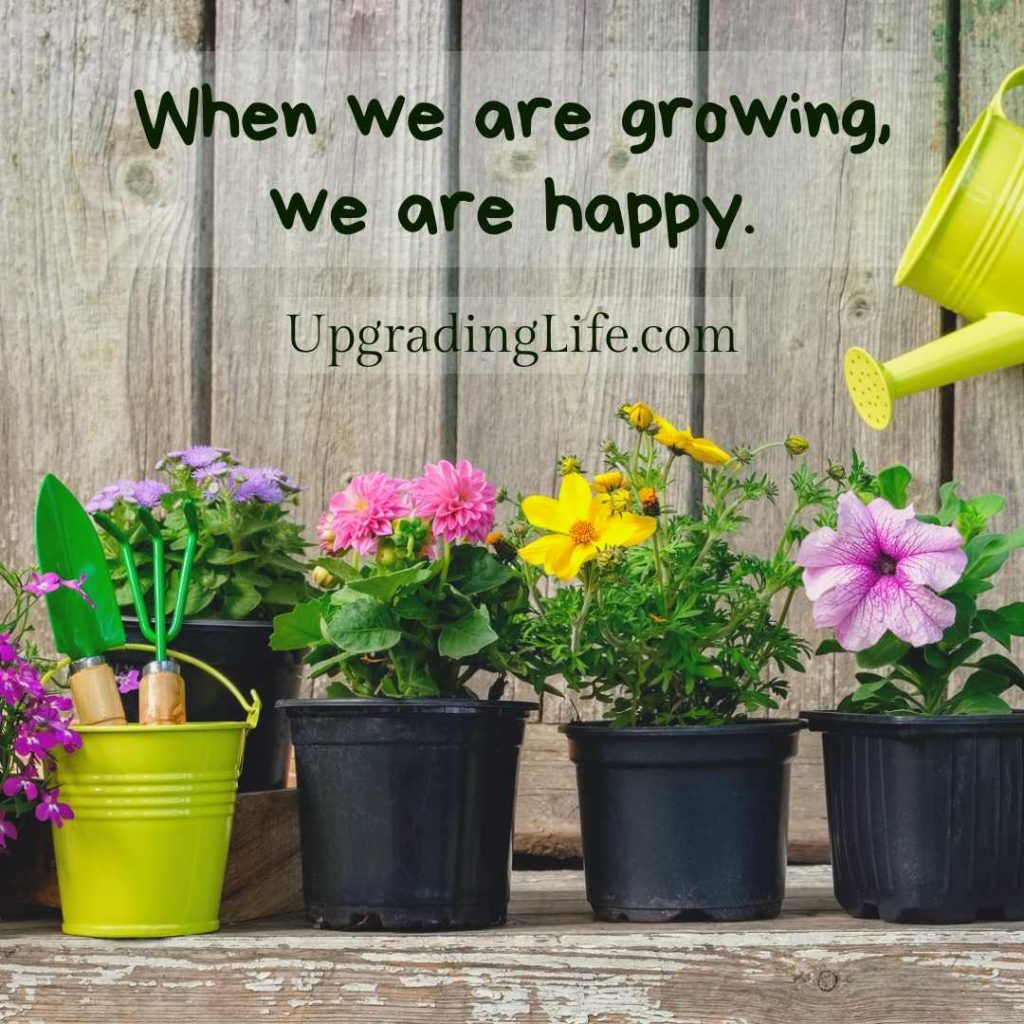 Growth, freedom, risk, security and true happiness